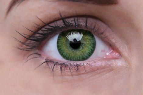 ColourVUE 3 Tones Green (x2)