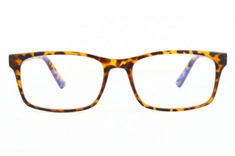 Naočale za računalo BLF73A