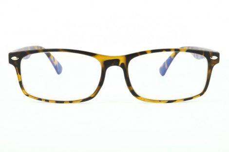 Naočale za računalo BLF83A